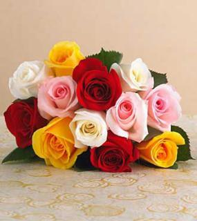 Send Flower to Bangalore by Winni