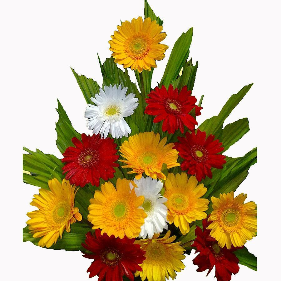 Order online flowers in Pune