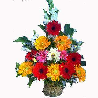 buy Cheerful Experience  20 Mix coloured Gerbera and Gladilos
