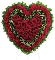 True Love  A bouquet of 20 Red Roses and 40 Red Carnations delivery in hyderabad