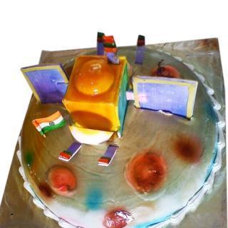 buy Satellite ( Orange Honey) Cake