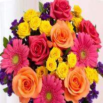 Colorful Wishes  A bouquet of 5 Gerbera and 25 Multicolored Roses