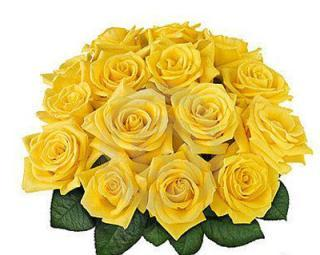 buy Sunny Wishes  A bunch of 15 Yellow Roses