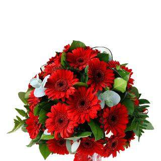 buy Remarkable You  A bouquet of 18 Red Gerbera flowers