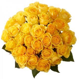 buy 36 Yellow Rose Bouquet