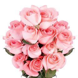 buy 12 Pink Rose Bouquet
