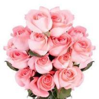 buy 18 Pink Rose Bouquet