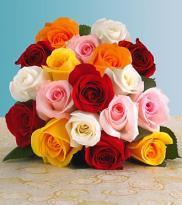 buy 24 Multi colour Rose Bouquet