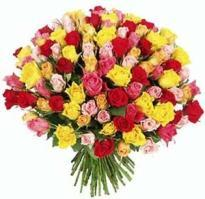 buy 50 Multi colour Rose Bouquet