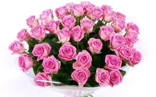 buy Love Forever A bunch of 80 Pink Roses