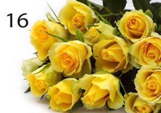 buy 16 Yellow Roses
