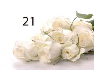 buy 21 White Roses