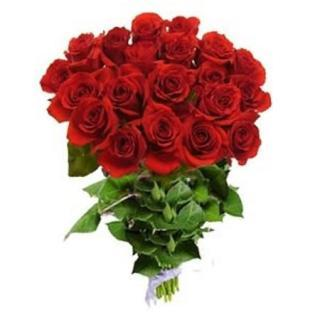 buy 12 Red Rose Bouquet