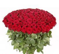 buy 100 Roses bunch
