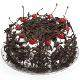 Buy Black Forest Eggless Cake