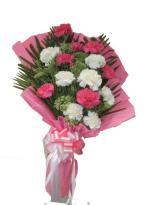 Pink and White Gerberas in Pink Packing