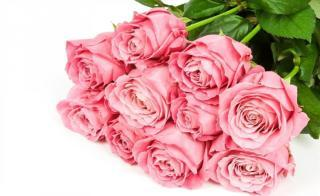 buy Pink roses exclusive bunch