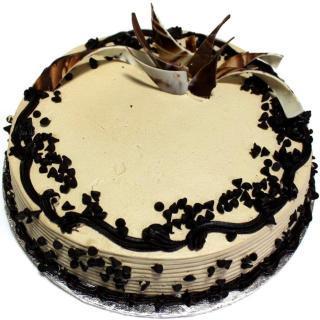 buy Choco Chip Cake