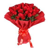 buy Red Roses in Red Packing