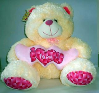 buy I love you Teddy(cream clour)