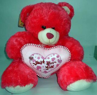 buy just for you teddy with heart(dark Pink)