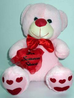 buy for someone special teddy(light pink)