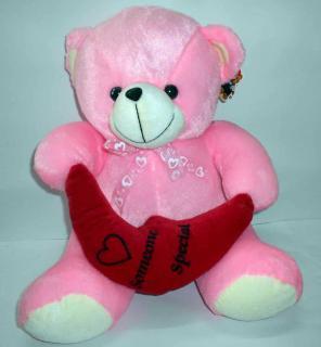 buy someone special teddy