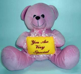 buy you are very special teddy(pink)