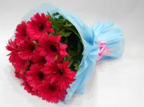 Serene Beauty  A bunch of Pink Gerbera flowers