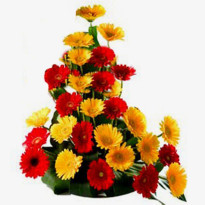 Basket of Mixed Color Gerbera