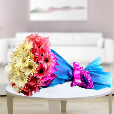 Buy Joyous Celebrations  A bunch of Mix Color Gerbera flowers