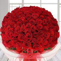 Lovers Bloom