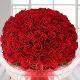 Buy Lovers Bloom