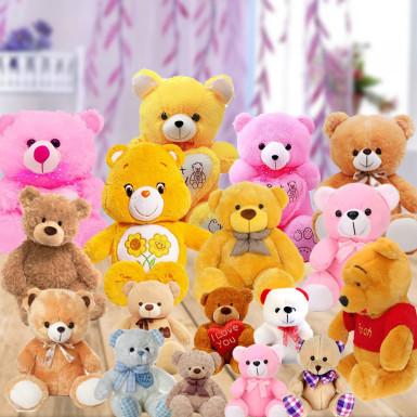 Buy Cute Teddies for Buddies