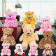 Buy Room Full of Teddies