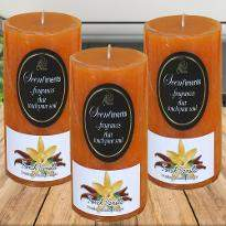 French Vanilla Scented Candles