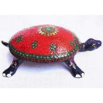 Lovely Tortoise