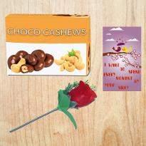 Choco Cashews Combo