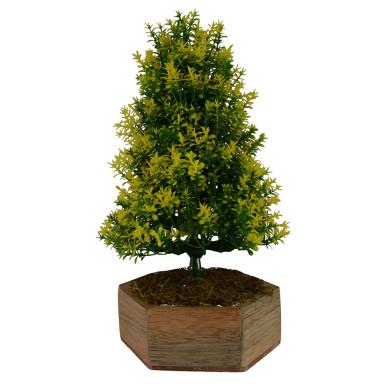 Buy Bonsai Christmas Tree