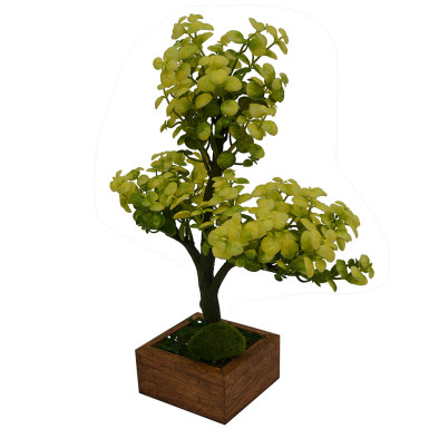 Buy Artificial Plant Hackleberry Bonsai