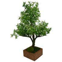 Artificial Hackleberry Bonsai