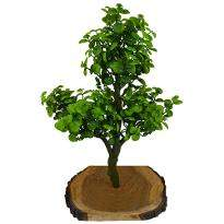 Artificial Bonsai Berry Plant
