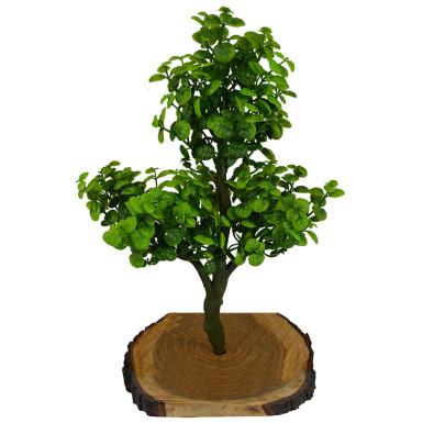 Buy Artificial Bonsai Berry Plant
