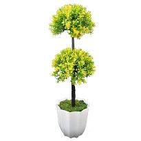 Long Bonsai Yellow DDT