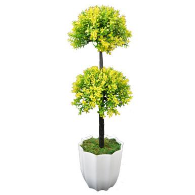 Buy Long Bonsai Yellow DDT