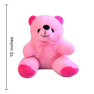 Buy Medium size Pink Teddy Bear