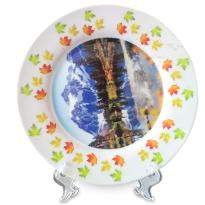 Customized Ceramic Plate