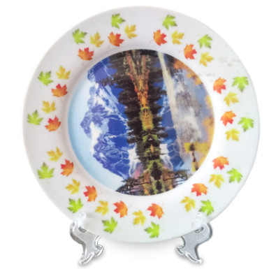 Buy Customized Ceramic Plate