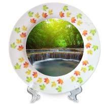 Elegant Ceramic Plate