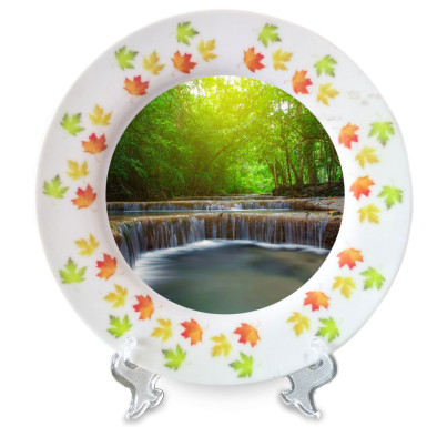 Buy Elegant Ceramic Plate